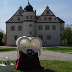 weiße Hochzeitstauben in Brandenburg